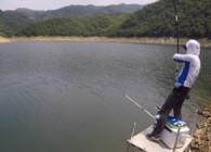 《白条游钓》白条游钓梅山水库 水深鱼大杆子拉的呼呼响 是不是很刺激!