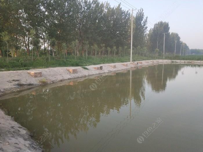杏坡垂钓园
