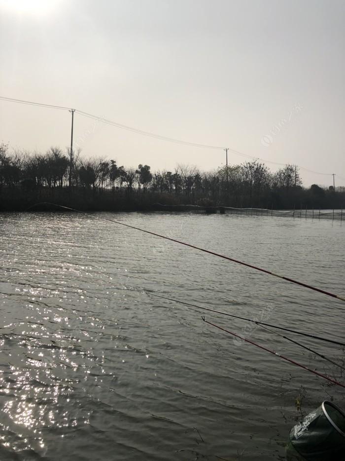 南湖休闲鱼馆