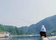 钓鱼之家无双鲤高碳新品5.4米实战测试 轻量强韧大小兼顾