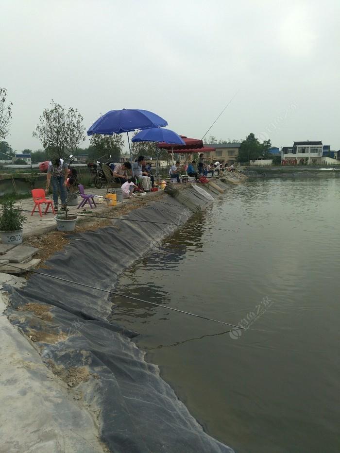 青白江鑫焱家庭农场