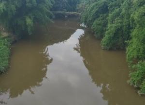 马溪河天气预报