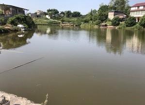 泸弥村三观塘天气预报
