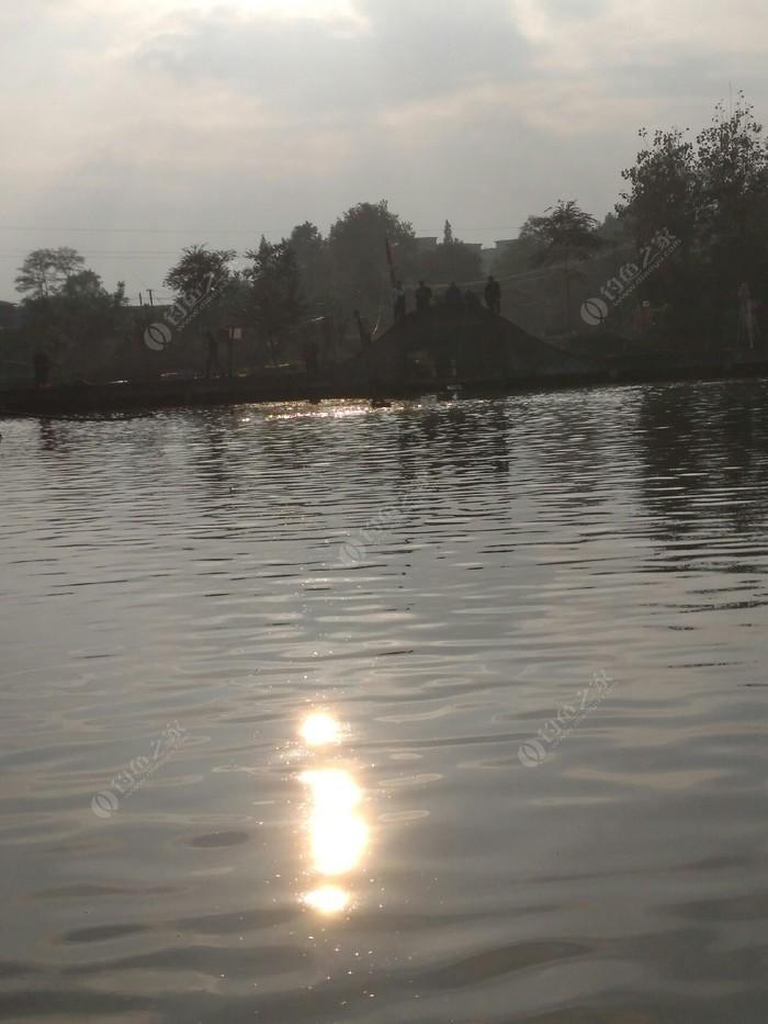 兰老伍鱼塘