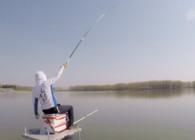 《白条游钓》草冲水库钓鲫鱼 逗鱼钓法显威力 漂相清晰竿竿中鱼
