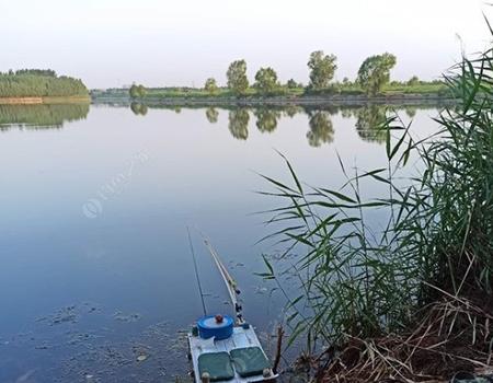 钓鱼要找老窝,但是有个条件,不要打扰鱼安静