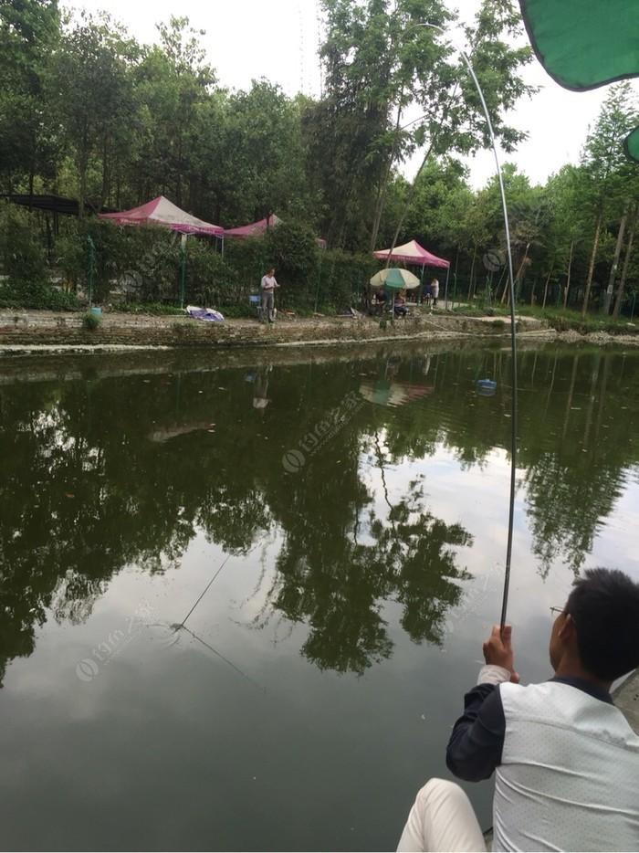 小院坝欢乐塘