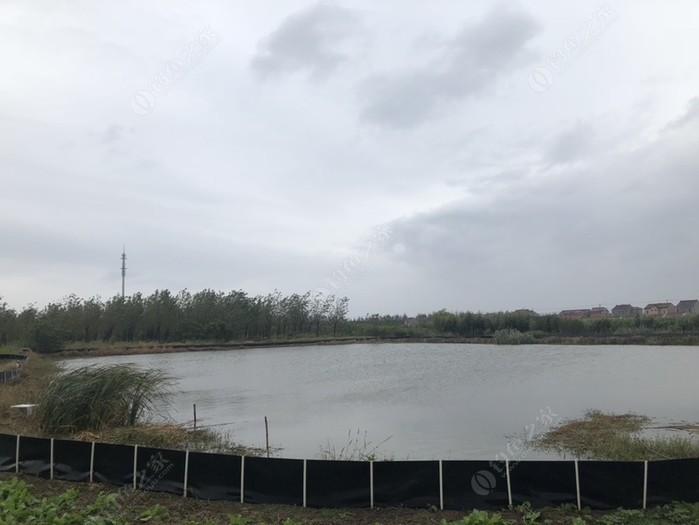 望湖钓鱼场