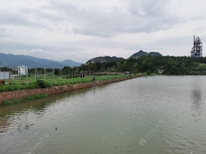 杨梅塘休闲钓鱼农场