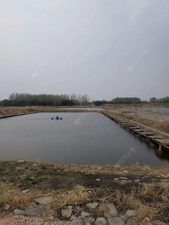 河南村红鳍渔场