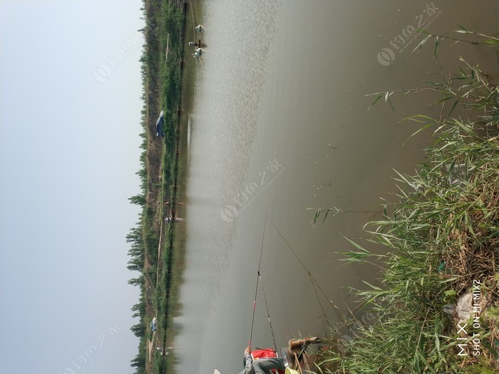 武清黄庄水城垂钓园