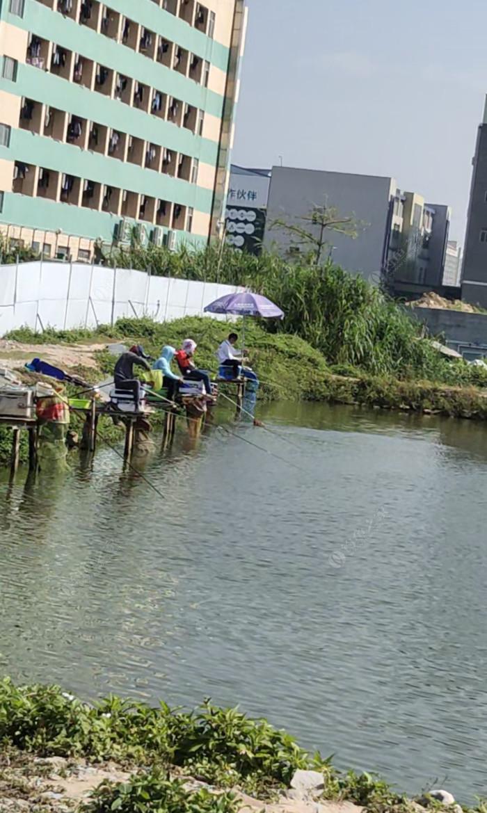 欢迎钓鱼场
