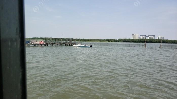 小蔡阳澄湖湖中休闲垂钓