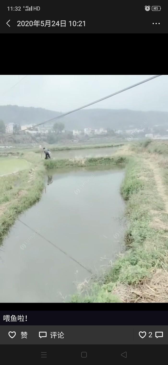 整寨村鱼塘