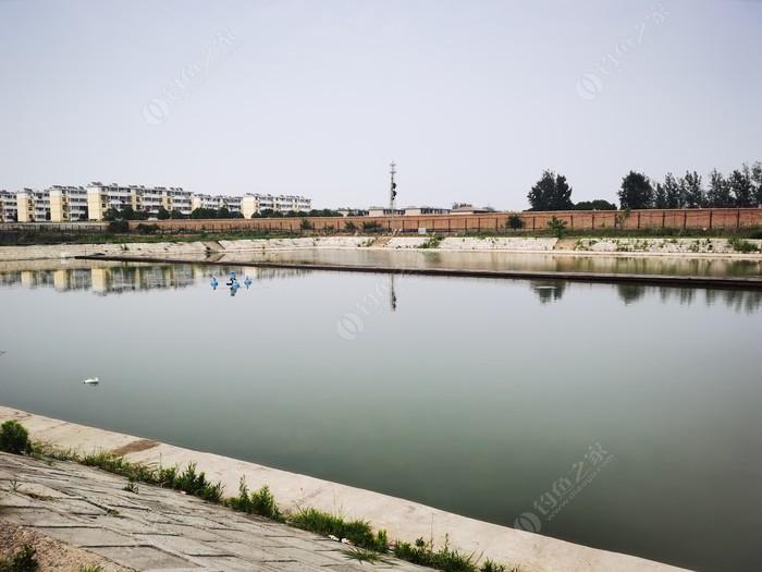 在水一方生态园