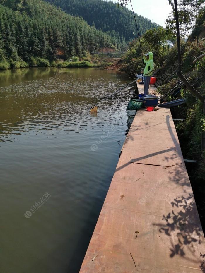 清水寨釣魚場