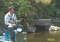 《程宁钓鱼视频》竞技钓鲫鱼教学视频第16集