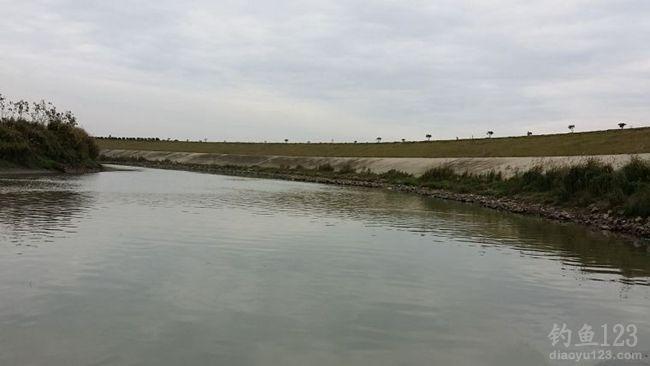 初冬钓滁河遭遇鲤鱼窝