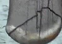 《鱼乐无限》2014 第44期 去春盛达试标(五)
