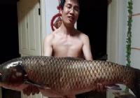 2014渔获大总结致逝去的青春