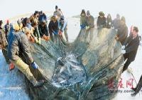 小河子渔场冬季捕鱼节盛大开幕