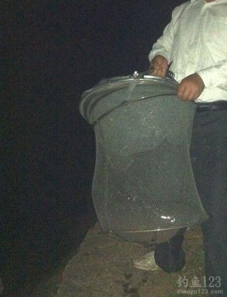 30斤大草鱼
