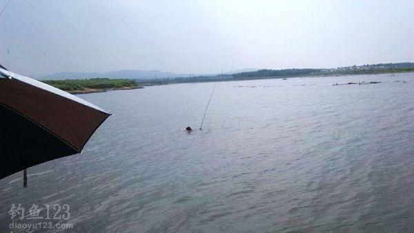 水中捞鱼竿