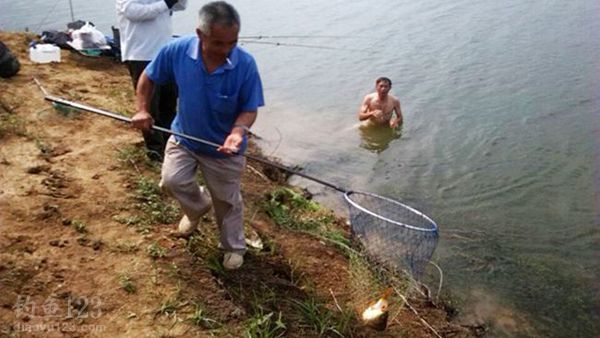 鱼被抄上岸