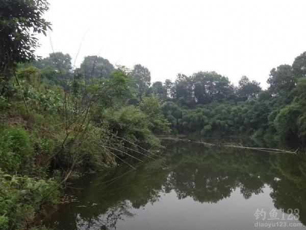 佛阴利群水库风景