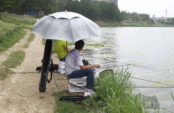夏季釣魚野釣
