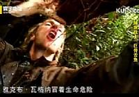 《寰宇地理之捕鱼战士》巨骨蛇鱼