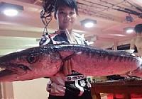 美女深海海钓各种大鱼频上钩