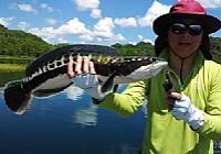 泰国旅游饮食钓鱼三不误