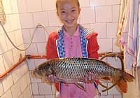 长宁太平水库钓获鲤鱼