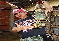 在印尼夺龙岛疯狂钓鱼