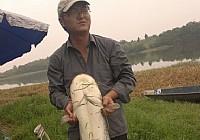 钓友在三岔湖用亮片路亚到27斤大鲶鱼