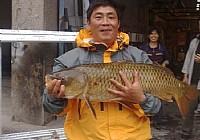 在三岔湖用弹簧杆钓到大鲤鱼