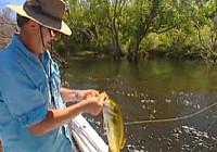 《荒野垂钓》第6集 莫伊尔和菲茨莫里河