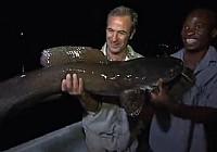 《极限钓鱼》第三季 第1集 非洲赞比亚夜钓大鱼