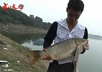 《水库钓鱼视频》武汉天元战队钟祥水库钓大鱼(上)