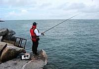 海钓的分类和技巧