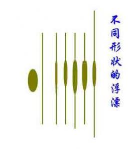 [钓鱼入门]新手学钓鱼8