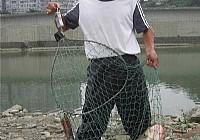 釣獲36斤大白鰱放生