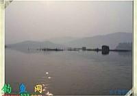 钓友在四川乐山新店水库路亚到世界最大的鳝鱼(据说)