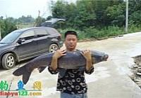 湖南钓友在铁山水库钓获52斤大青鱼