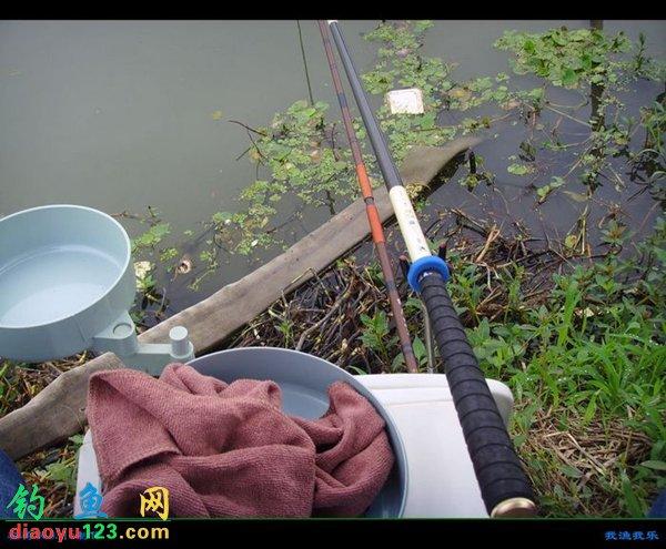 研祥鯉魚竿