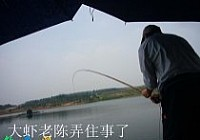 東俊餌水庫狂釣鰱鳙釣到爆護