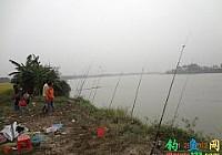 钓友在开平潭江用海竿爆炸钩钓获41斤大青鱼