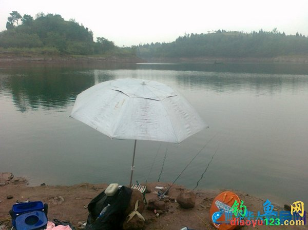 广安水库钓鲤鱼