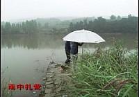 2012年度野钓大总结(爽钓大鱼)